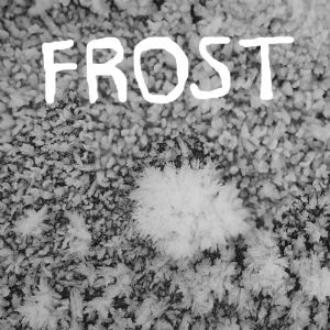 Frost front cover