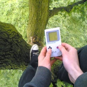 The Game Boy Tree Adventures front cover